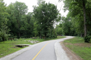 Road in Quincy park